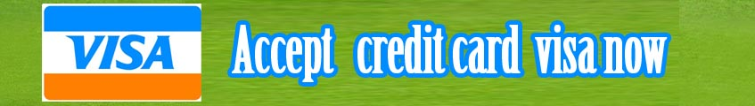 accept credit card visa now and discount bank fee